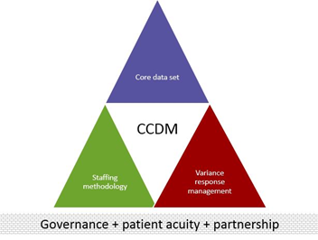 The CCDM model explained