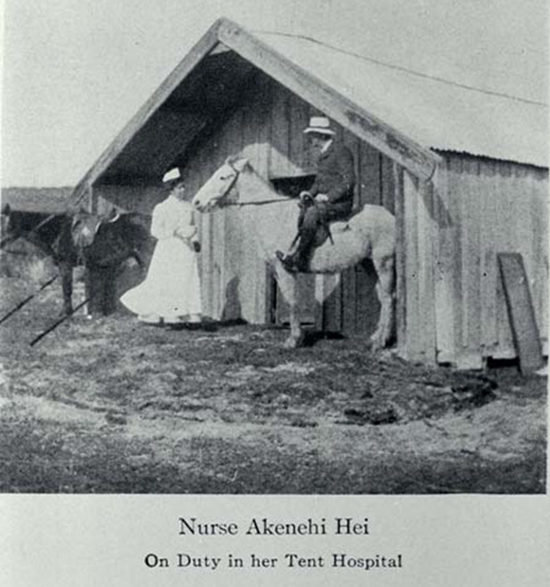 Nurse Akenehi Hei on duty in her tent hospital